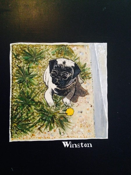 Winston as Puppy with Dandelion by Concrete partition.  Xmas 1983, McCormick Ranch/Scottsdale.