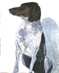 Painting of a German Shorthair against a wall